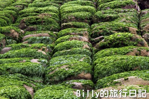 基隆和平島綠魔菇22