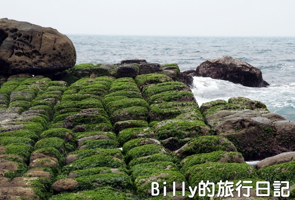 基隆和平島綠魔菇25