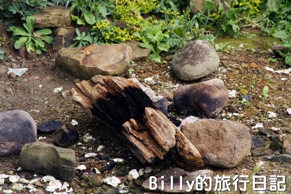 基隆和平島綠魔菇29