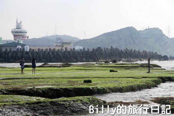 基隆和平島綠藻03.jpg