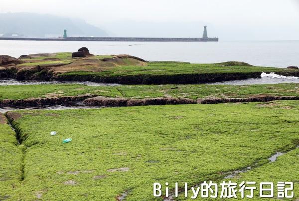 基隆和平島綠藻04.jpg