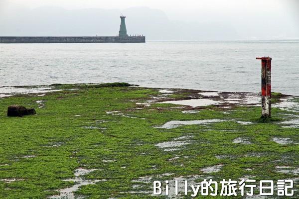 基隆和平島綠藻05.jpg