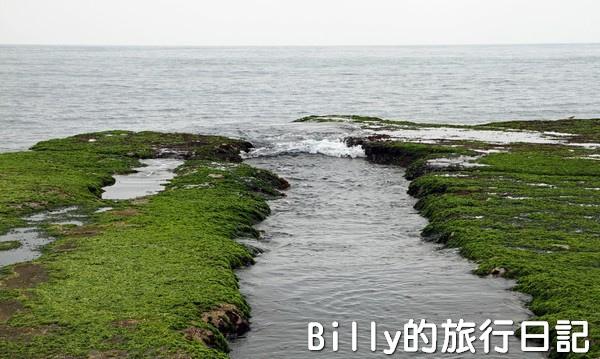基隆和平島綠藻06.jpg
