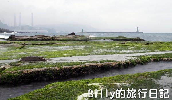 基隆和平島綠藻08.jpg