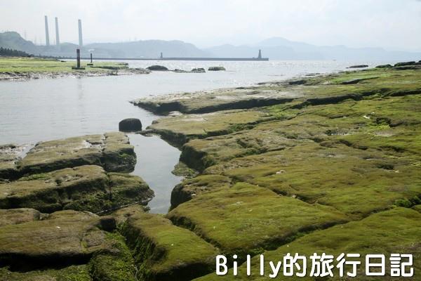 基隆和平島綠藻09.jpg