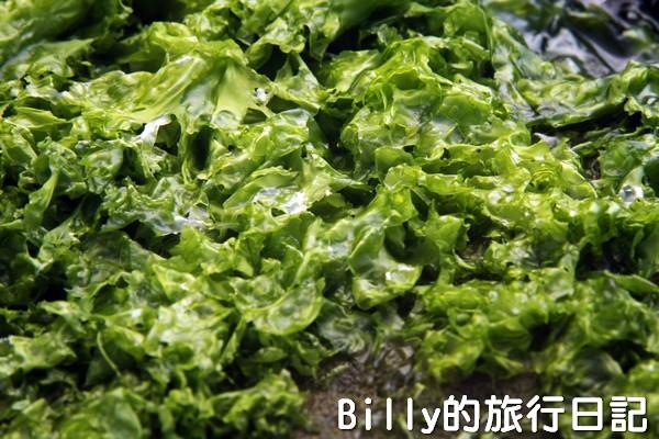 基隆和平島綠藻15.jpg