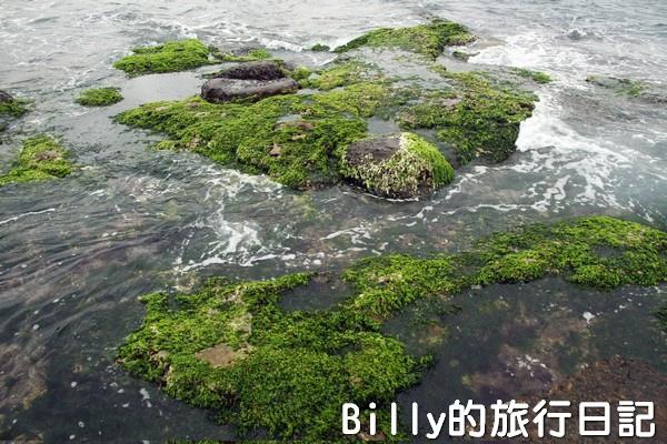 基隆和平島綠藻22.jpg
