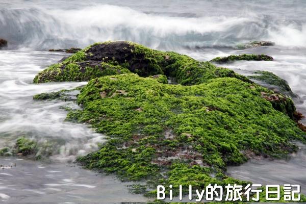基隆和平島綠藻25.jpg