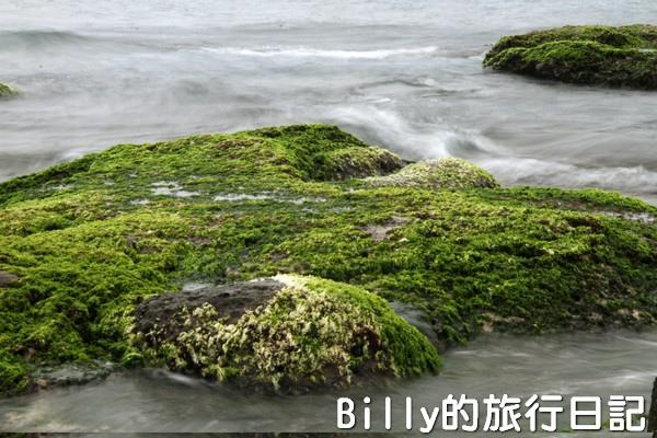 基隆和平島綠藻26.jpg