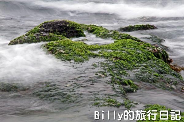 基隆和平島綠藻27.jpg