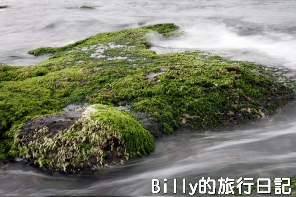 基隆和平島綠藻28.jpg