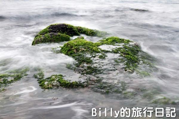 基隆和平島綠藻29.jpg