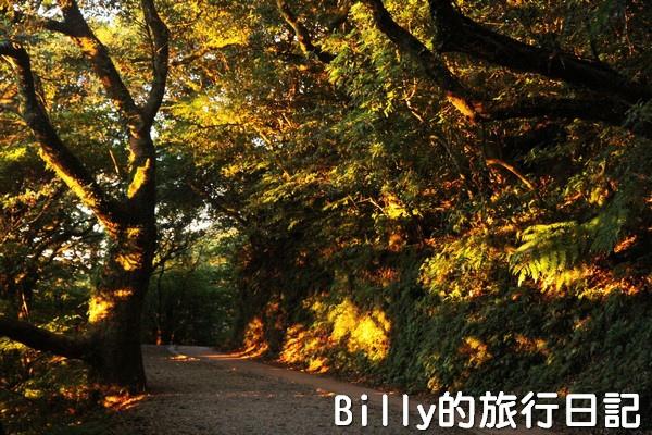 陽明山國家公園 - 二子坪步道032.jpg