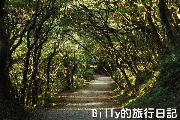 陽明山國家公園 - 二子坪步道028.jpg