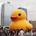 黃色小鴨圖片015.jpg