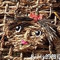 黃色小鴨桃園006.jpg