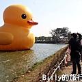 黃色小鴨桃園022.jpg
