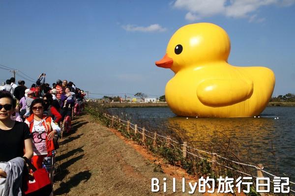 黃色小鴨桃園026.jpg