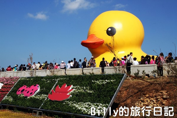 黃色小鴨桃園030.jpg