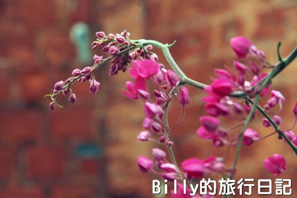 高雄旗津-旗後砲台017.jpg