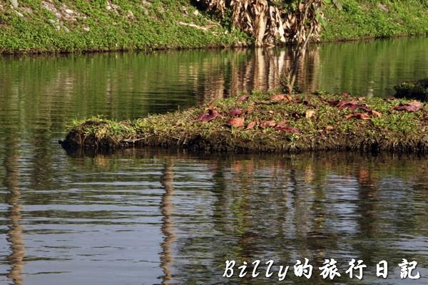 豐之谷自然生態公園 - 花蓮理想大地渡假飯店013.jpg
