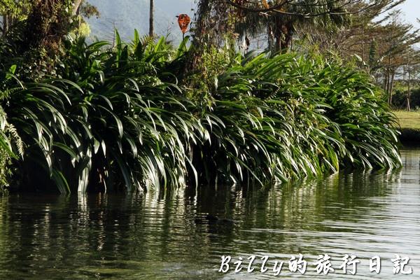 豐之谷自然生態公園 - 花蓮理想大地渡假飯店016.jpg