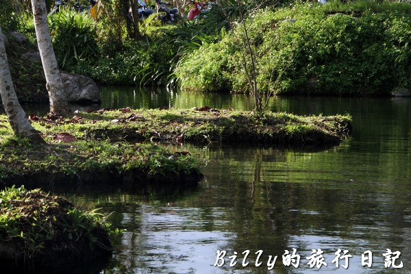 豐之谷自然生態公園 - 花蓮理想大地渡假飯店021.jpg
