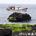 北方三島-花瓶嶼、澎佳嶼、棉花嶼013.jpg