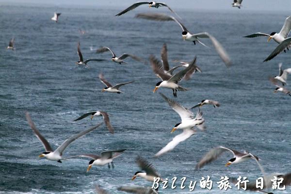 澎湖旅遊006.jpg