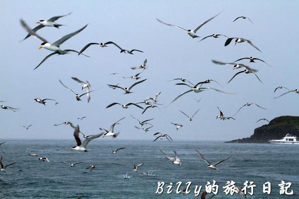 澎湖旅遊 - 晶翔號沙港東海漁夫體驗031.jpg