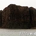 澎湖旅遊 - 晶翔號沙港東海漁夫體驗033.jpg