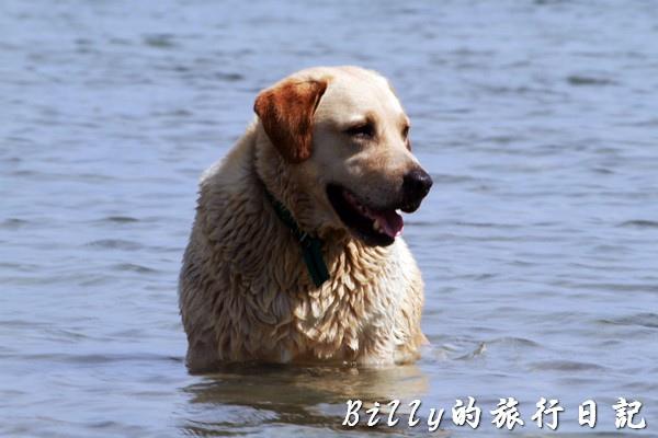 澎湖旅遊 - 晶翔號沙港東海漁夫體驗063.jpg