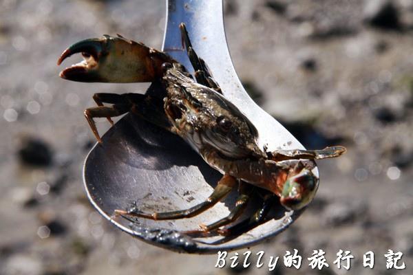 澎湖旅遊 - 晶翔號沙港東海漁夫體驗066.jpg