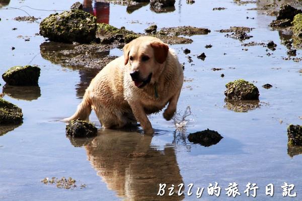 澎湖旅遊 - 晶翔號沙港東海漁夫體驗071.jpg