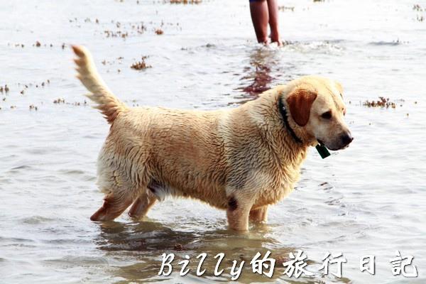 澎湖旅遊 - 晶翔號沙港東海漁夫體驗098.JPG
