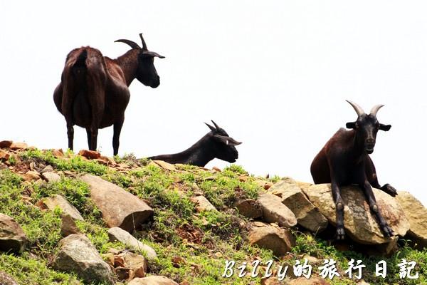 澎湖七美島026.jpg