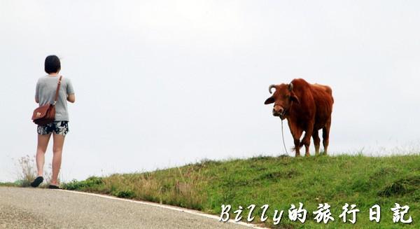 澎湖七美島030.jpg