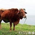 澎湖七美島031.jpg