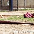 家扶社區棒球隊00030.jpg