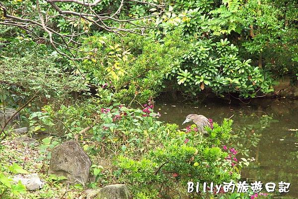 台北市植物園07.jpg