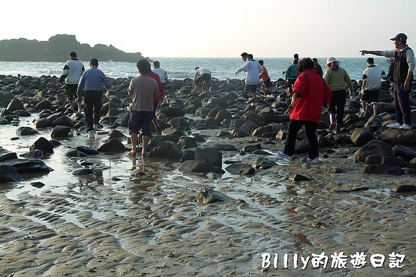 馬祖莒光尋章魚17.jpg