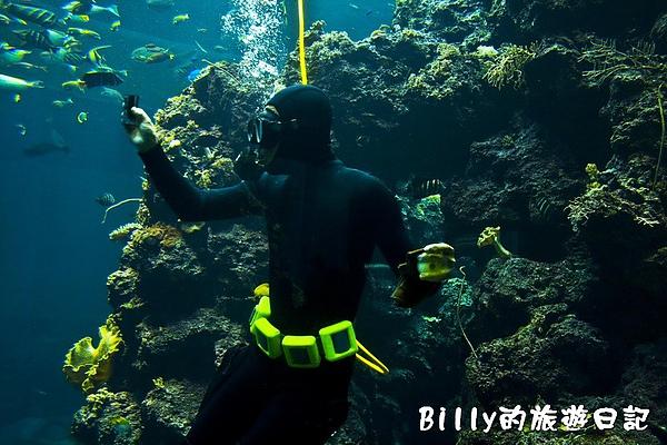 國立海洋生物博物館016.jpg