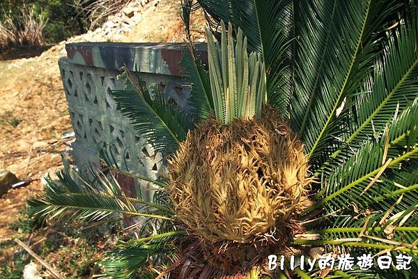 馬祖北竿大坵島092.jpg