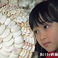 三芝貝殼廟32.jpg