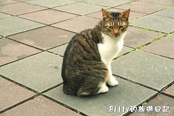 台北市植物園25.jpg