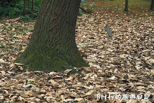 台北市植物園29.jpg