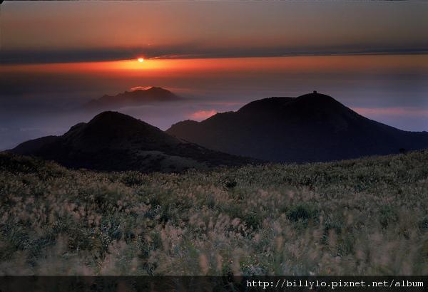 陽明山14.jpg