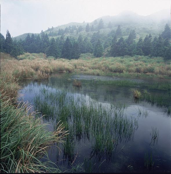 陽明山08.jpg