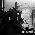 黑白人生03.jpg