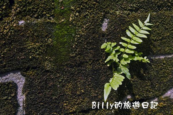 萬華剝皮寮188.jpg
